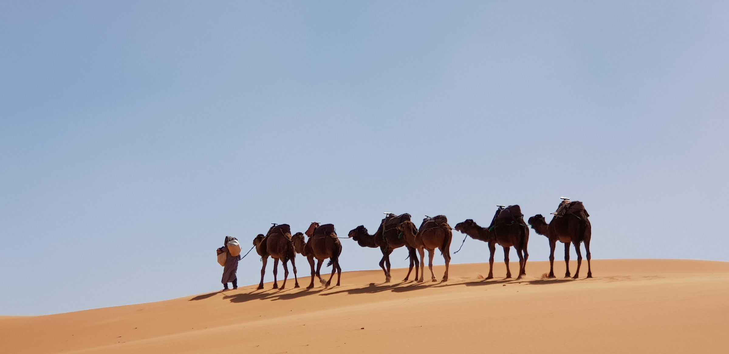 8-Day Luxury Imperial Cities & Desert - Morocco Itinerary