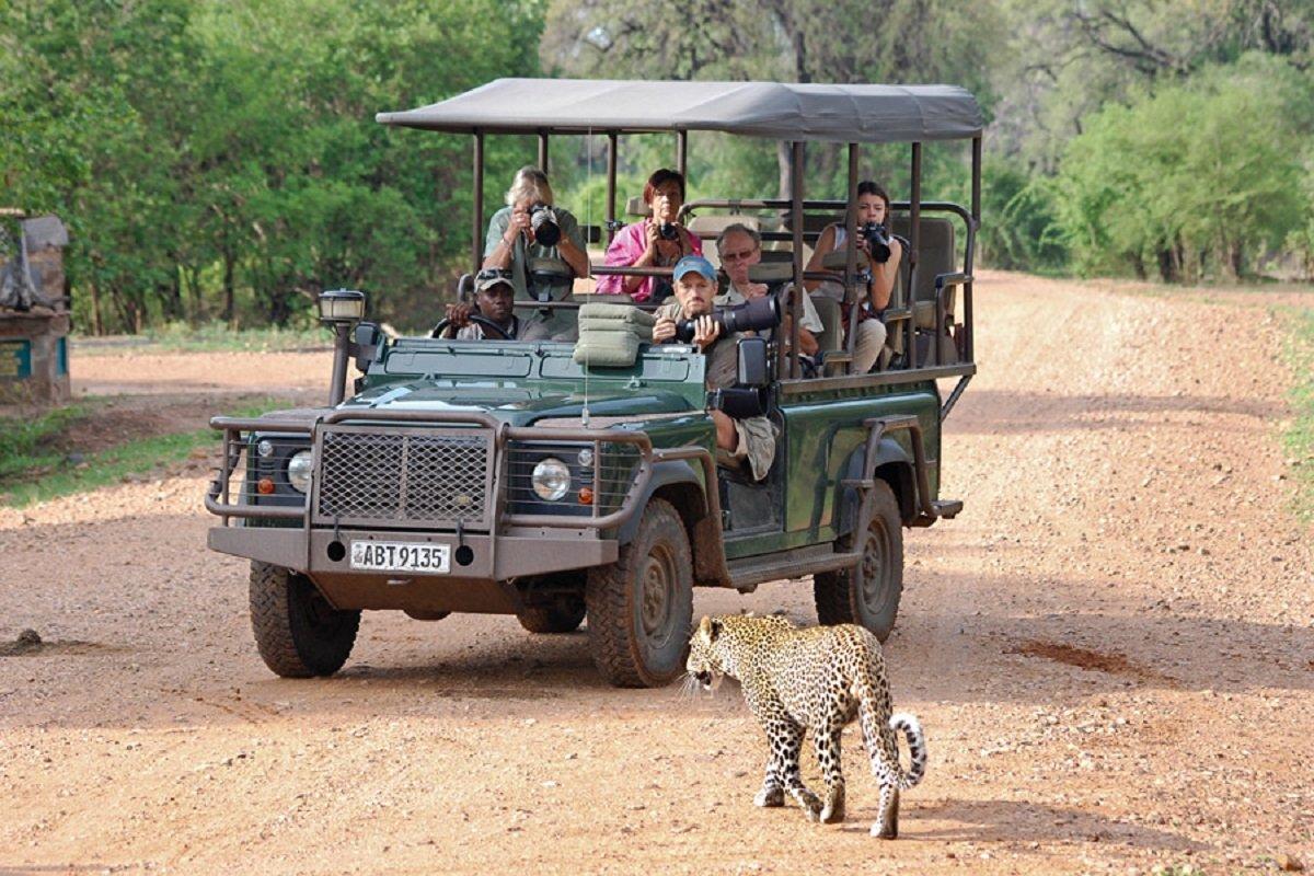 4-Day South Luangwa Luxury Safari - Zambia Itinerary