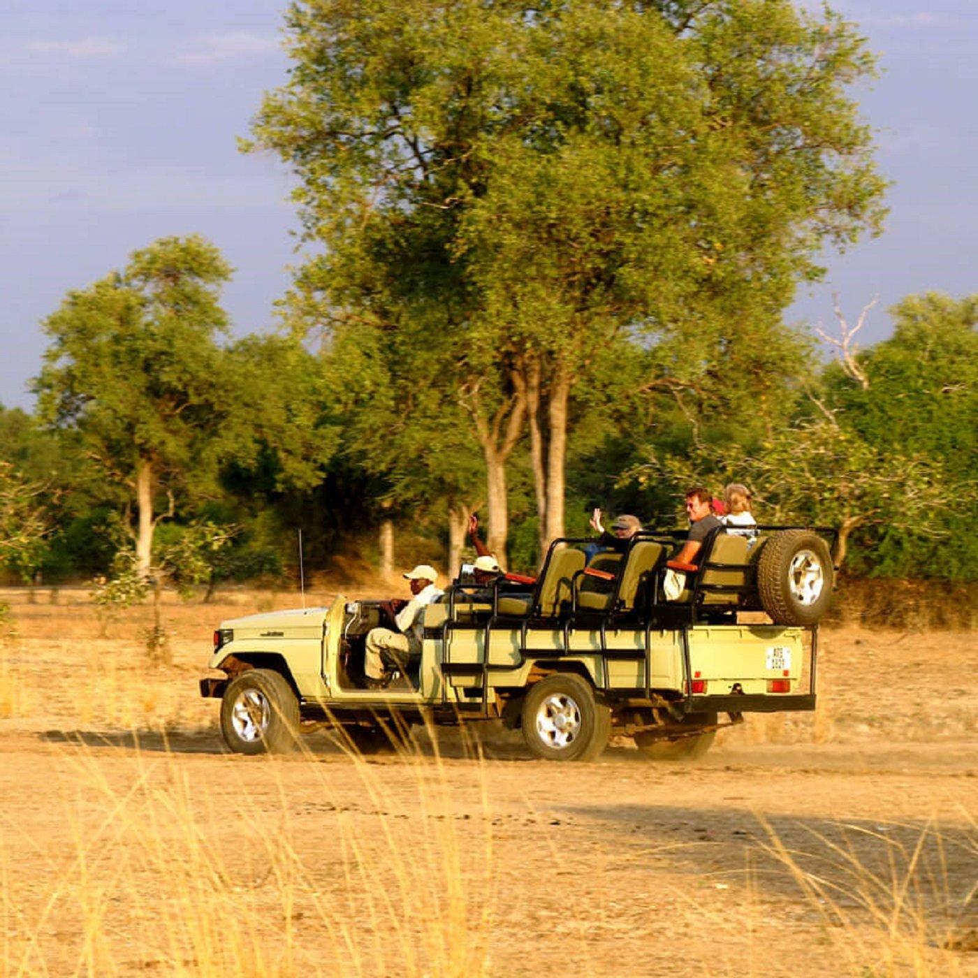 13-Day Animal Kingdom of Zambia - Zambia Itinerary