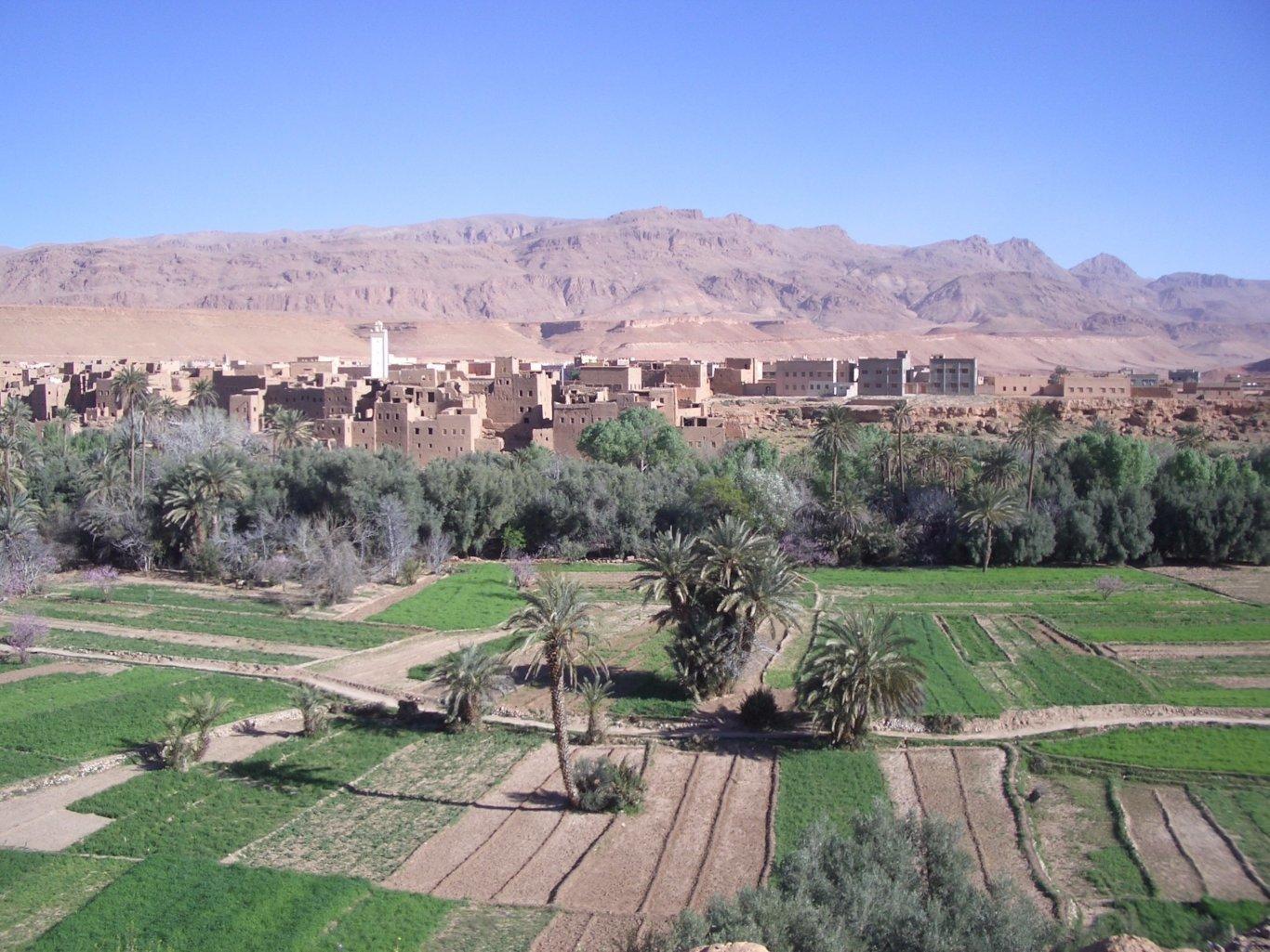 14-Day Imperial Cities, Sahara, High Atlas & Atlantic Coast - Morocco Itinerary