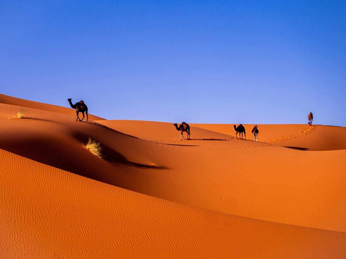 3-Day Sahara Desert Tour from Marrakesh - Morocco Itinerary